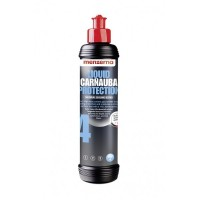 Liquid Carnauba Protection